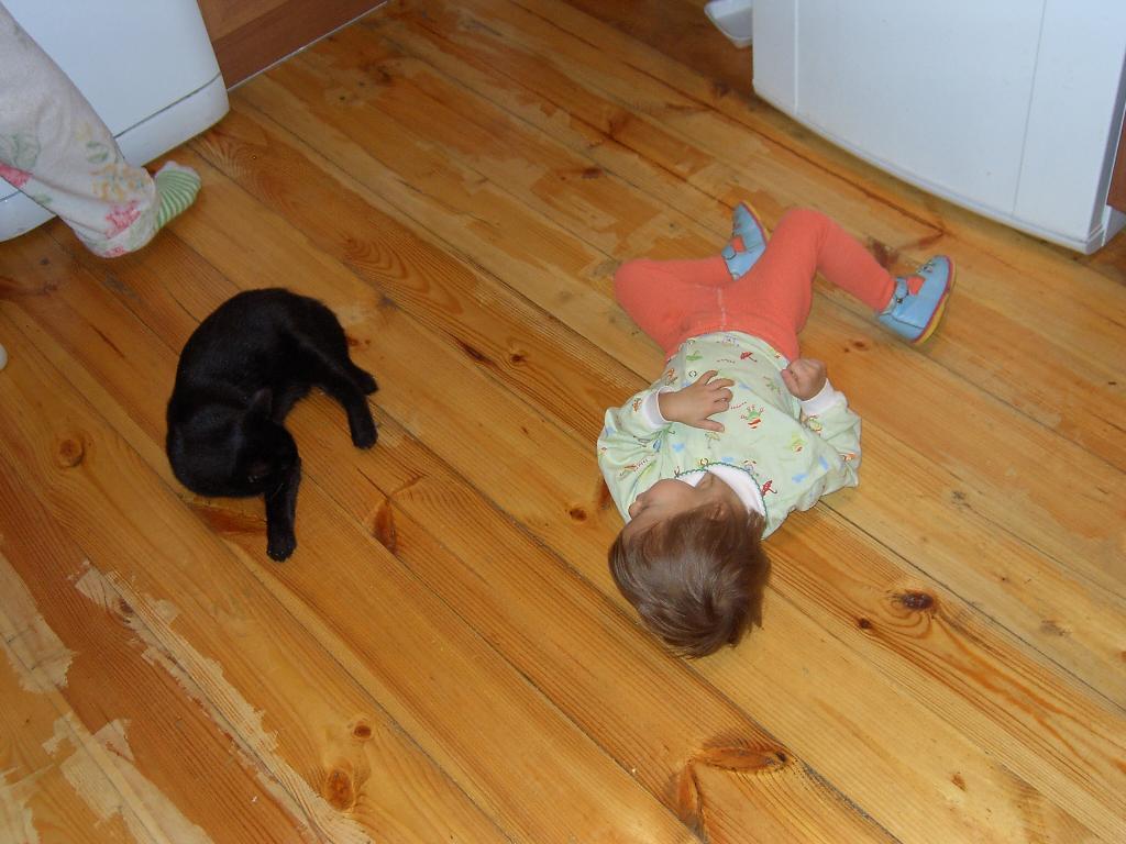 Послеобеденный отдых. Ребенок и   котенок