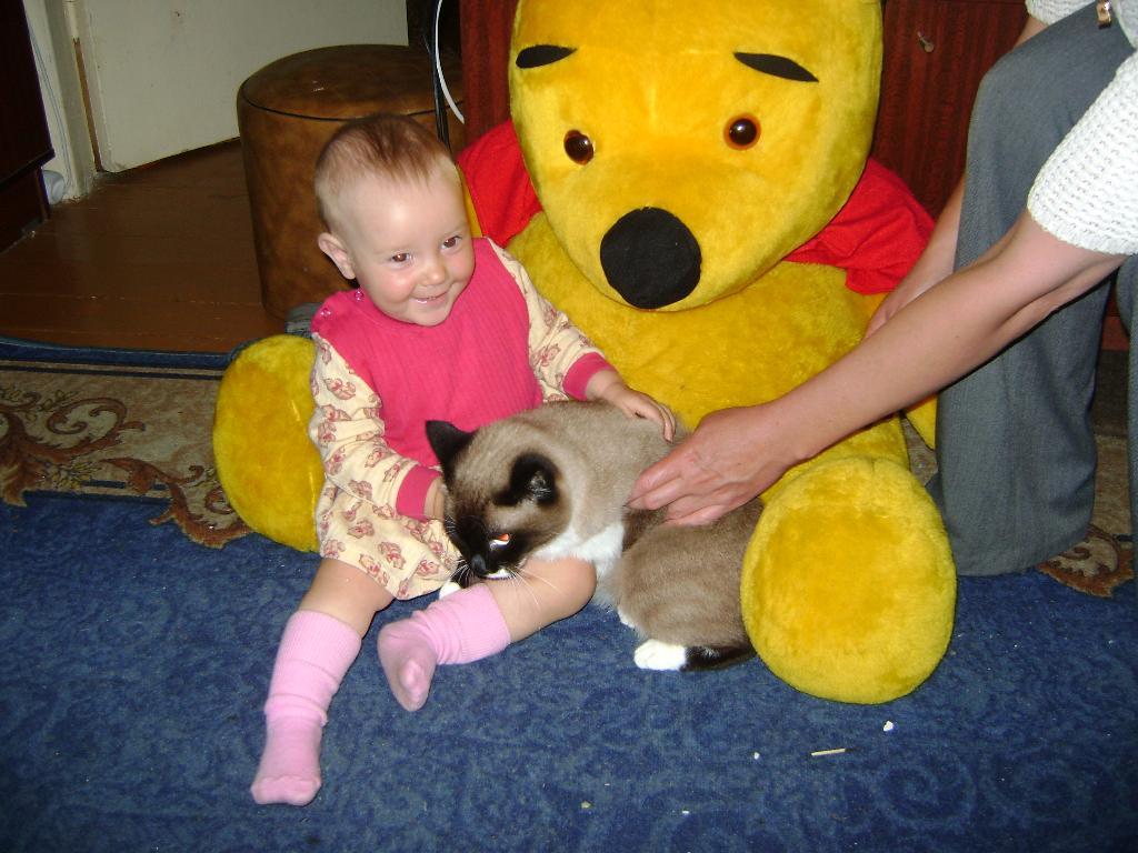 Винни-Пух и все все все!. Ребенок и   котенок