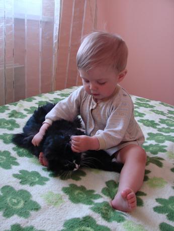 Андрюшка чистит кошке ушки. Ребенок и   котенок