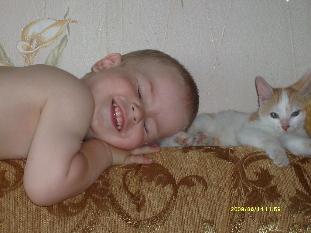 Пушистая подушка. Ребенок и   котенок