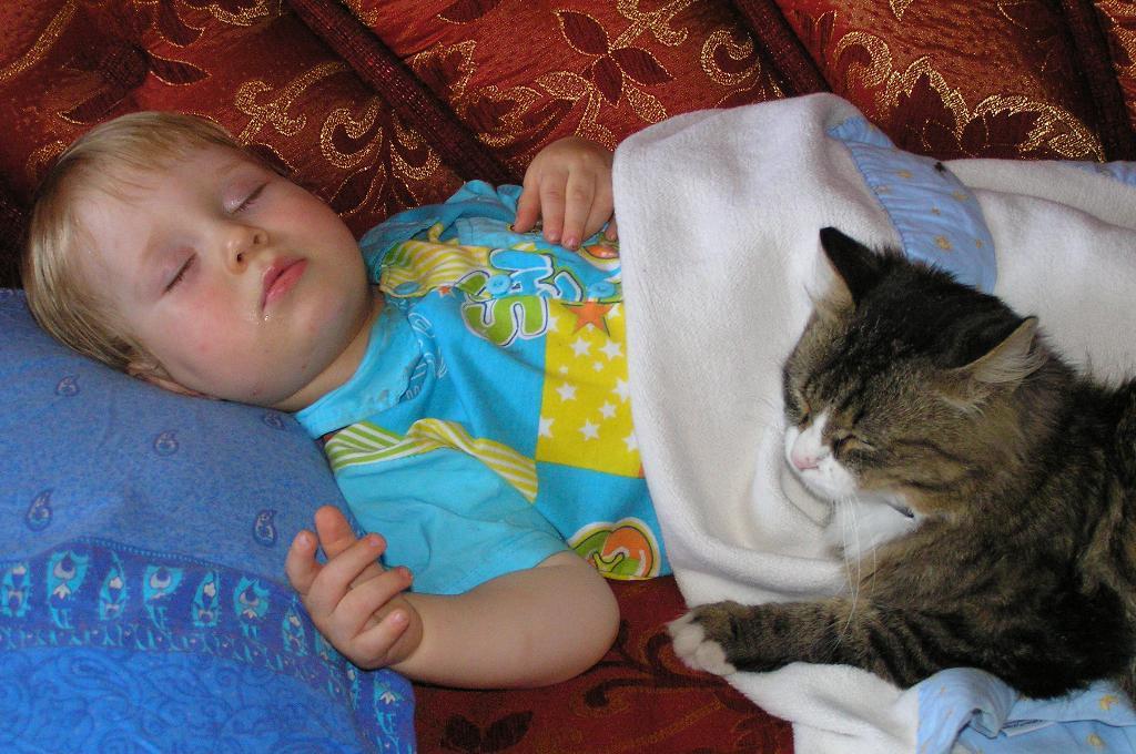 СПЛЮ Я .... Ребенок и   котенок