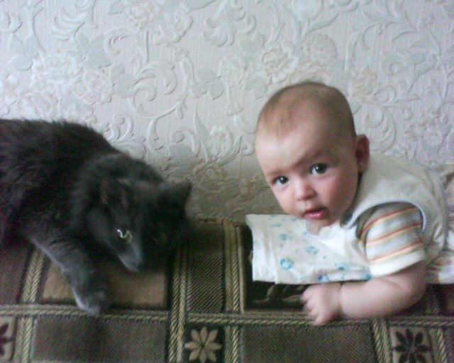 А глаза такие хитрые-хитрые ). Ребенок и   котенок