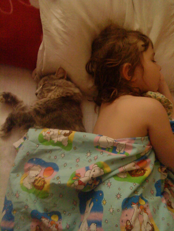 Размолвка. Ребенок и   котенок