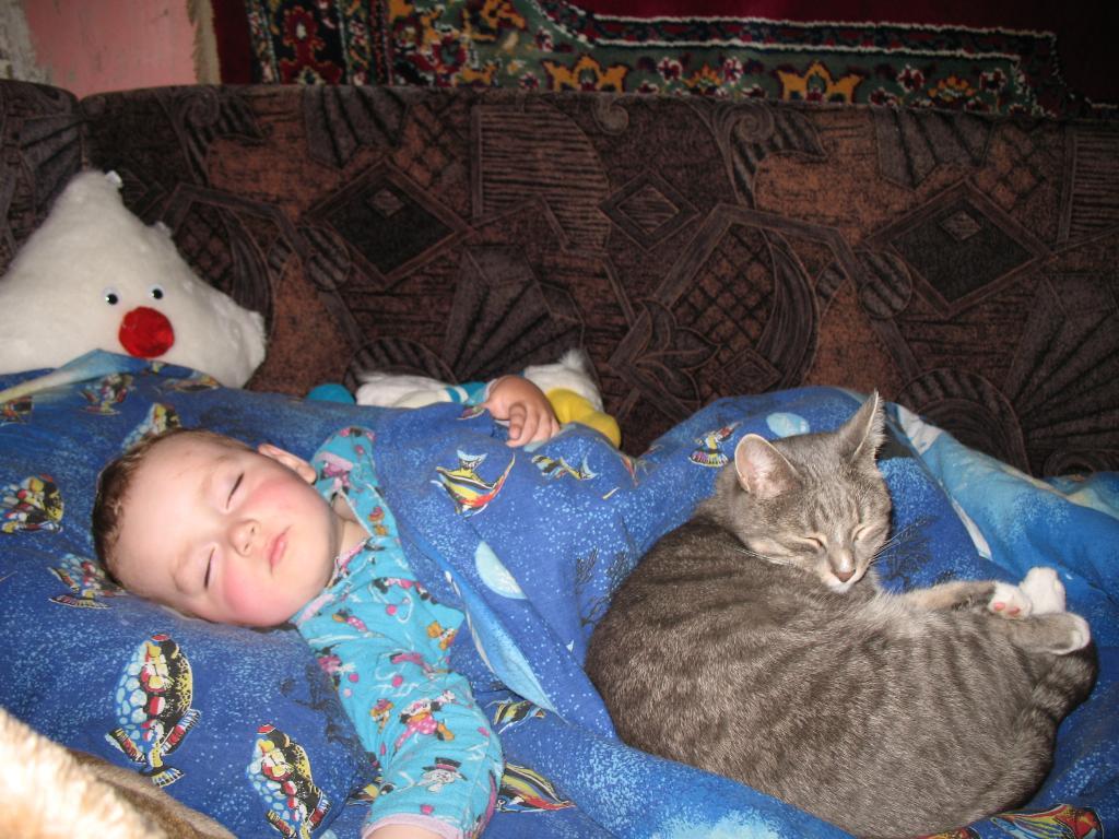 тихий час. Ребенок и   котенок
