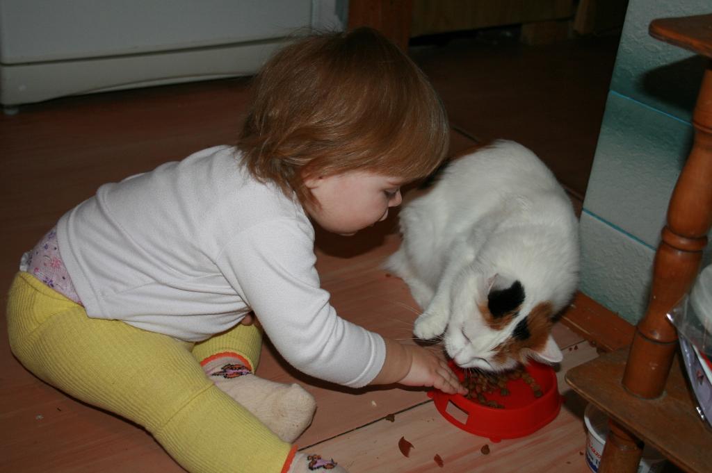 Дай посмотрю что ты кушаешь. Ребенок и   котенок