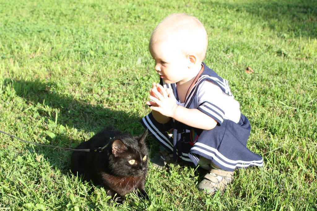 гуляем.... Ребенок и   котенок