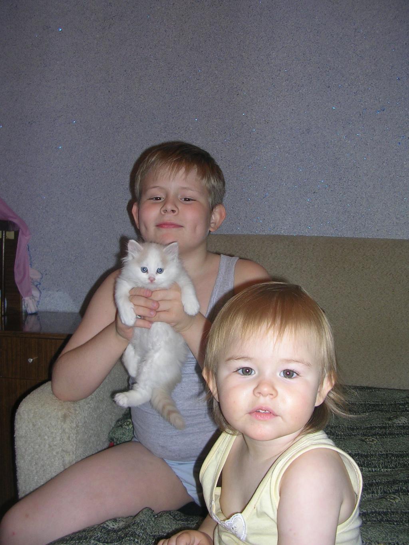 наши малыши. Ребенок и   котенок