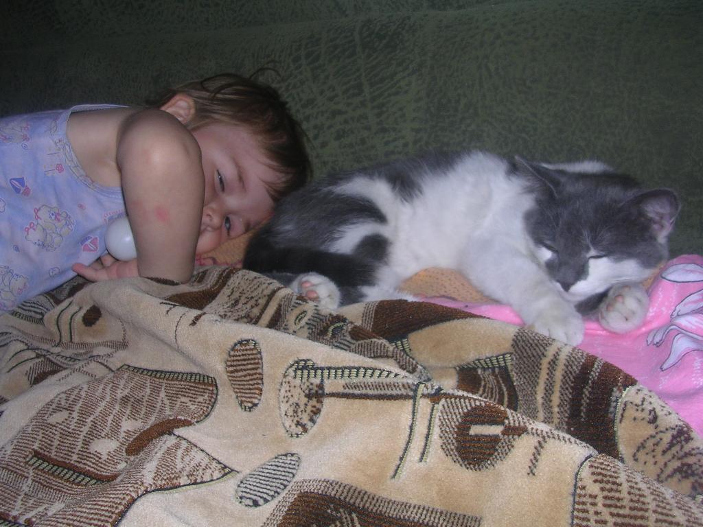 не мешайте нам спать. Ребенок и   котенок
