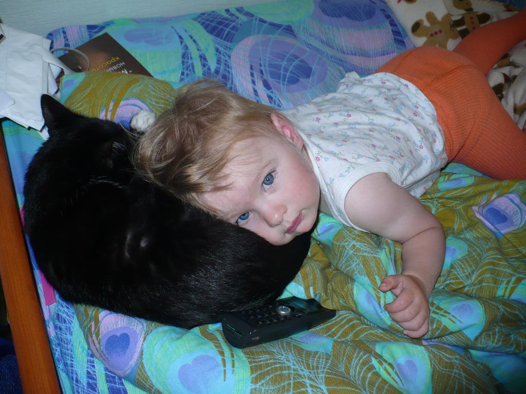 спим с киской!. Ребенок и   котенок