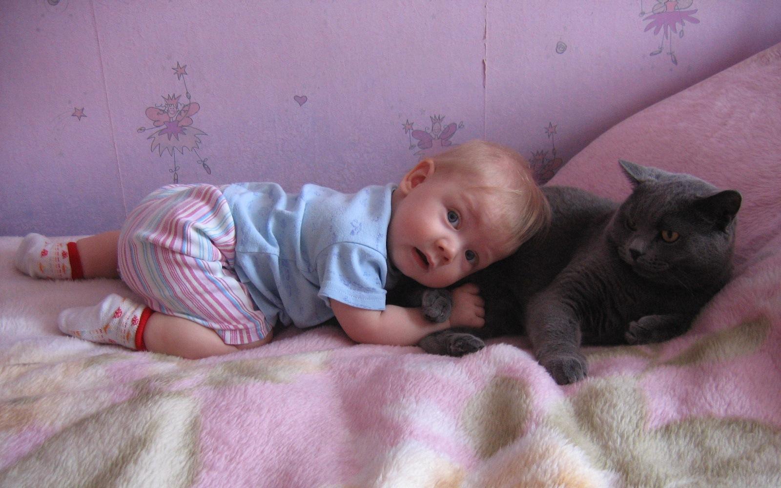 Моя любимая подушка - мягкая и теплая :). Ребенок и   котенок