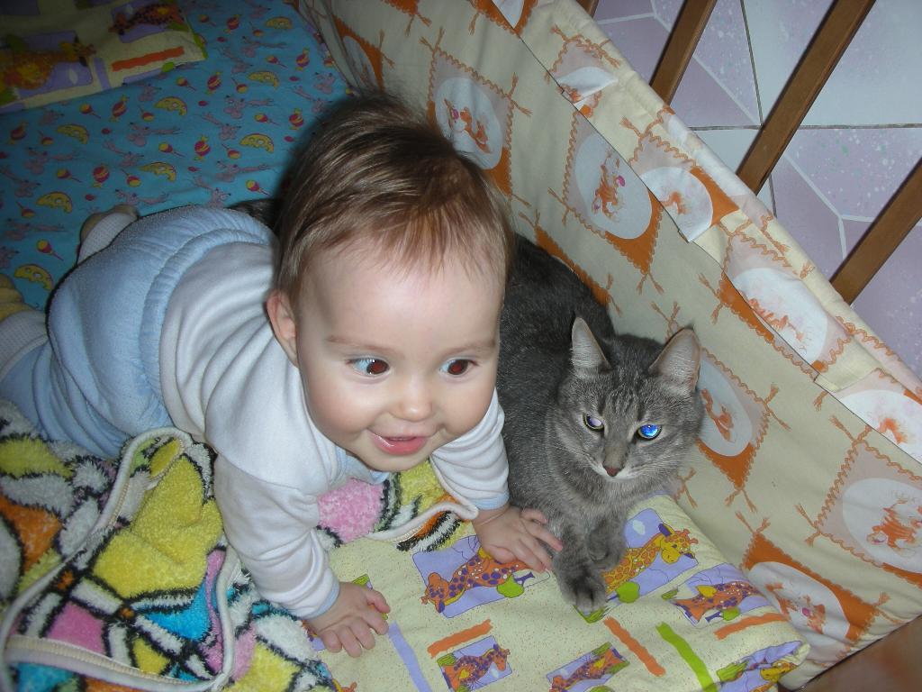 Мы кошки-близнецы. Ребенок и   котенок