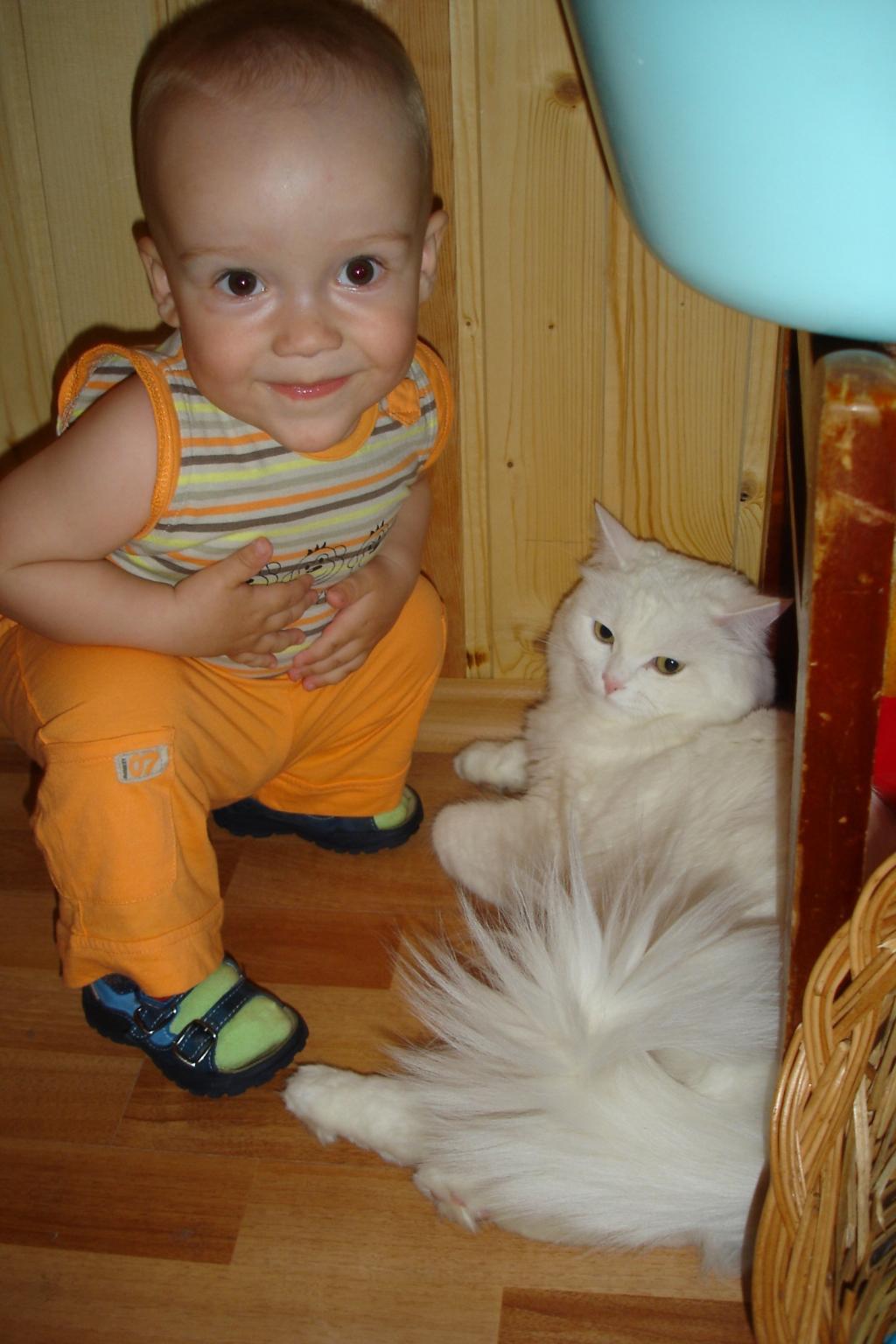 А мы друзья! :). Ребенок и   котенок