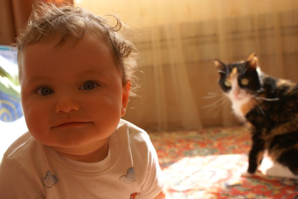 Максимка и Маняшка. Ребенок и   котенок