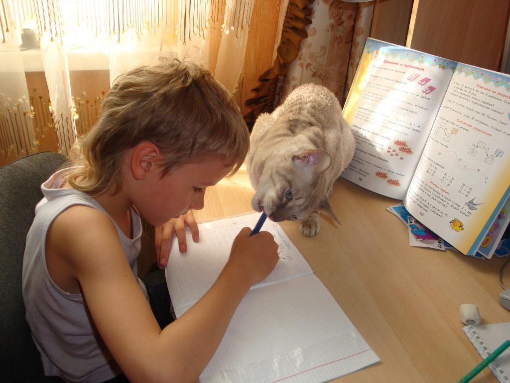 Учу ж - держи ручку правильно, выводи цифры ровно!. Ребенок и   котенок