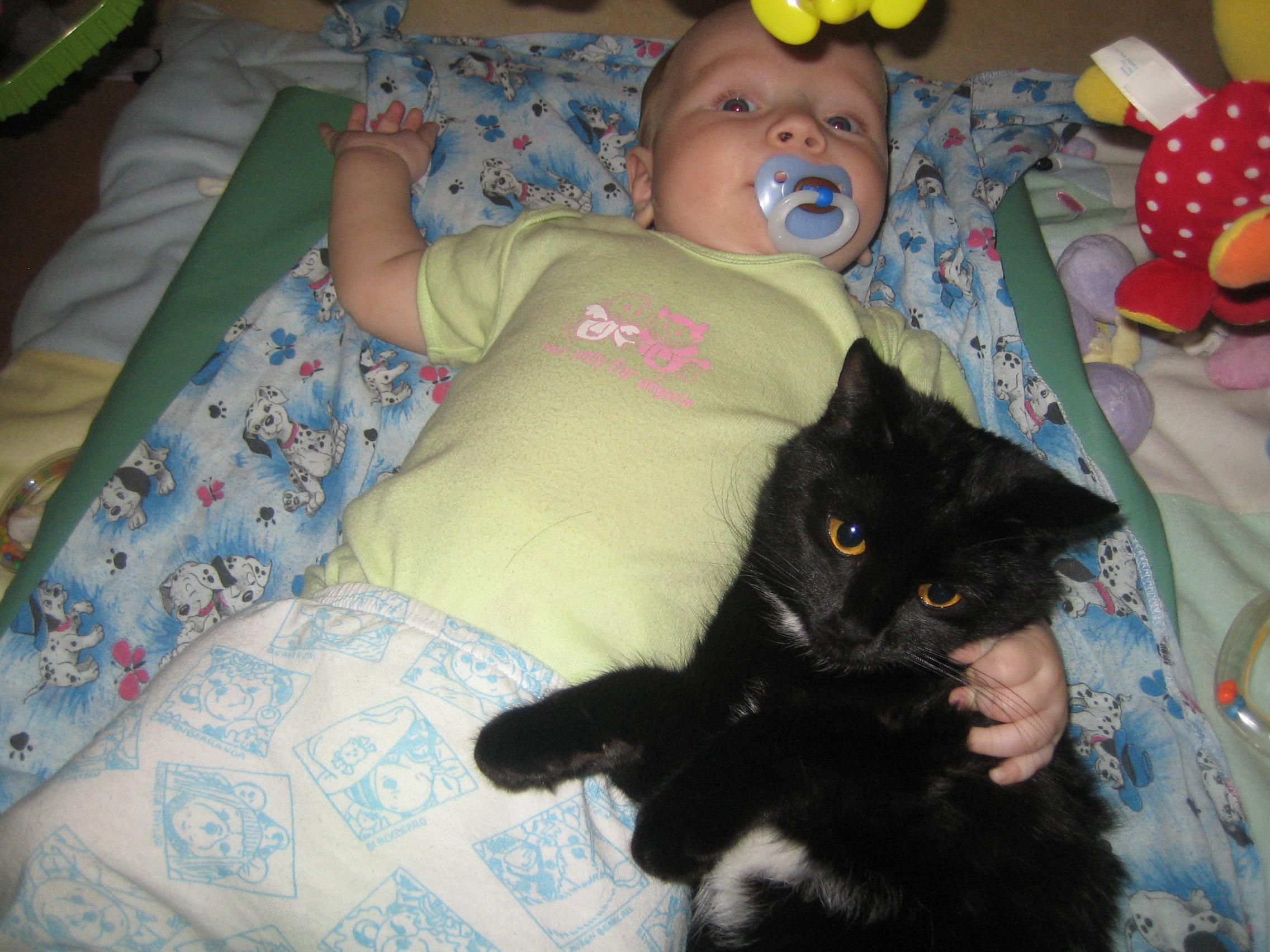 Вместе с пелёнок. Ребенок и   котенок