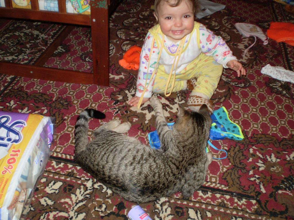 Наводим беспорядок. Ребенок и   котенок