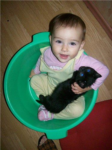 Дружба в тазике. Ребенок и   котенок