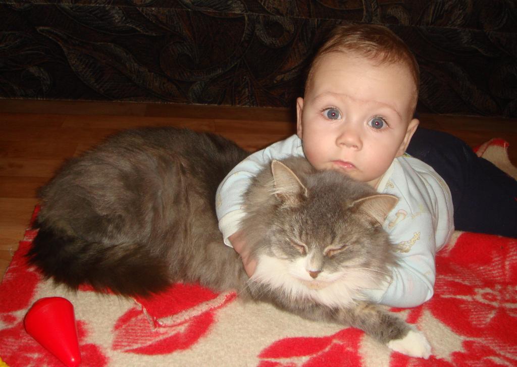 Укротитель тигров)))) . Ребенок и   котенок