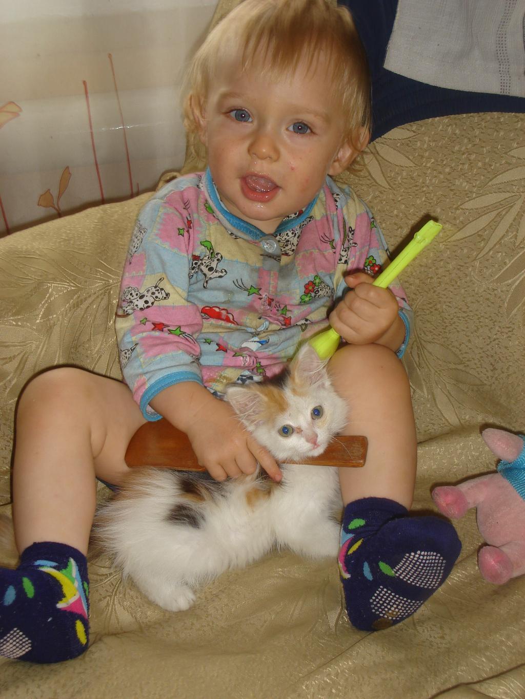 'запомните этого котенка в лицо!'. Ребенок и   котенок