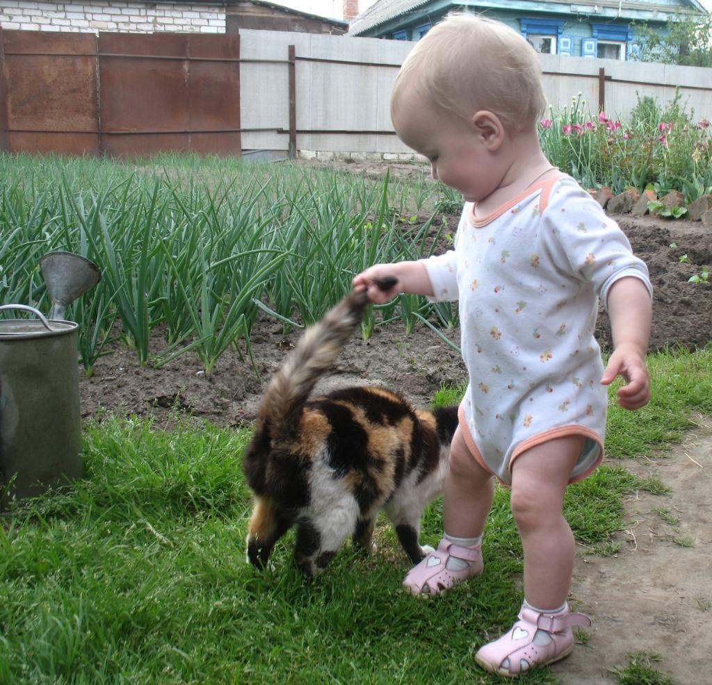 pervoe znakomstvo na oshup`. Ребенок и   котенок