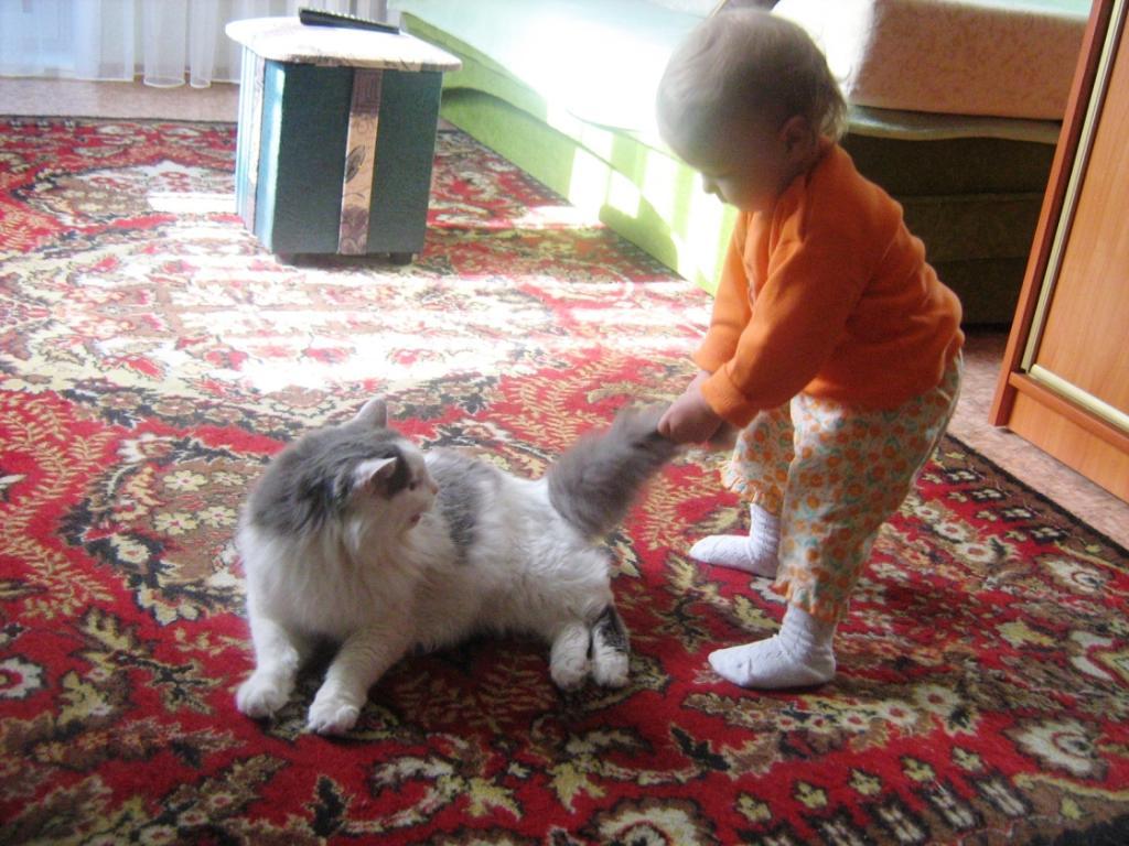 Эх, подрастает смена! А я хочу на пенсию!)). Ребенок и   котенок