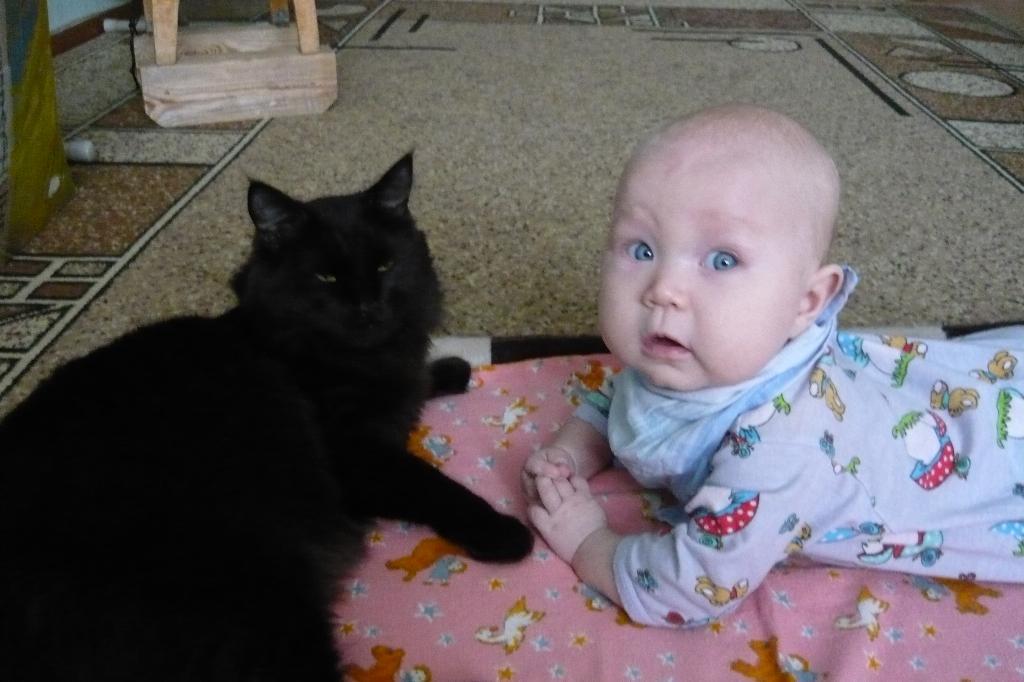 мои любимые крошки!!!. Ребенок и   котенок
