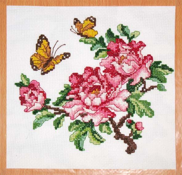 077_цветы и бабочки. Птицы