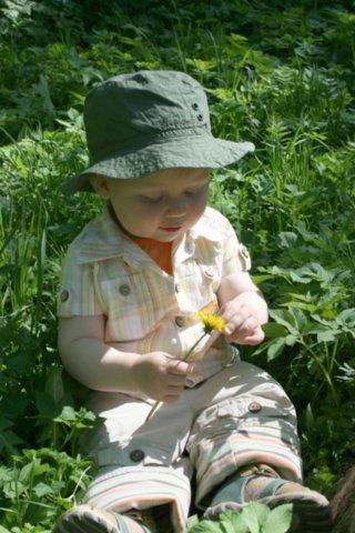 Юный натуралист. Белая панама