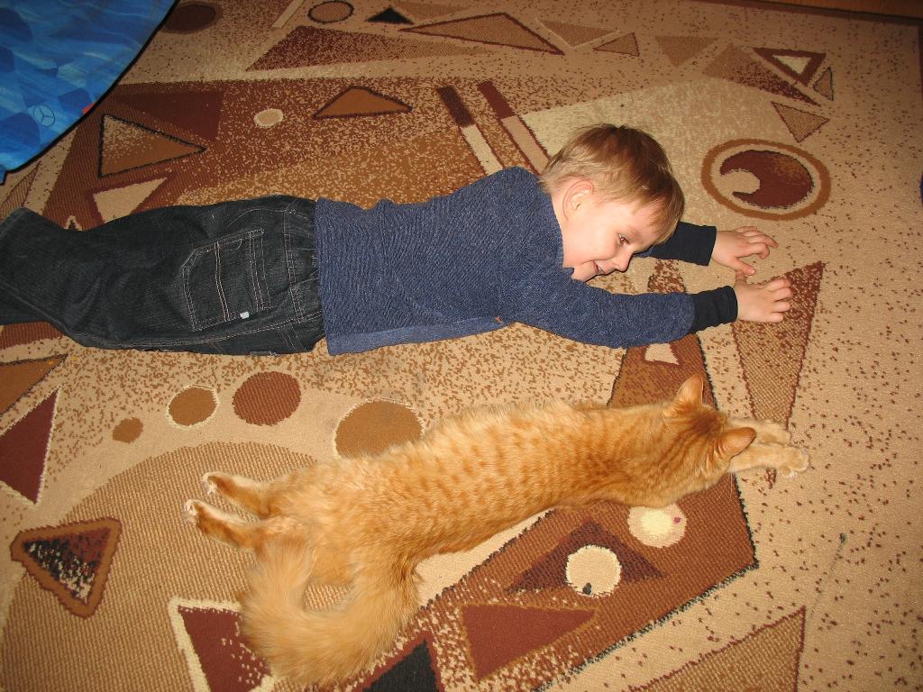 Найдите 10 отличий!))))). Ребенок и   котенок