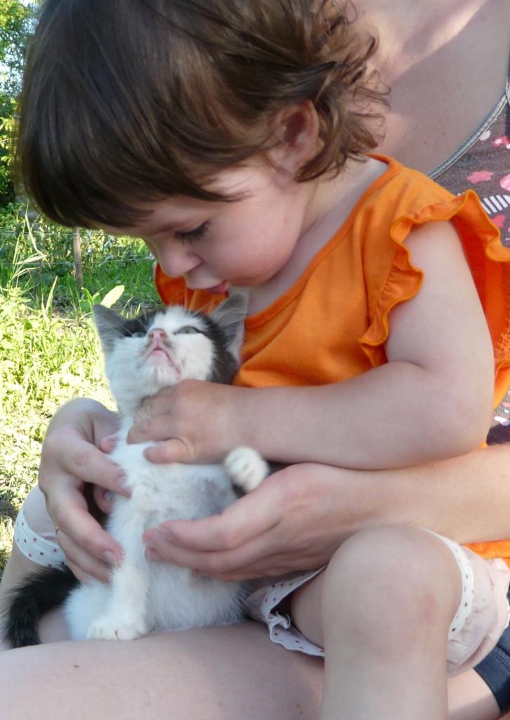 Аринка и Котёнок!. Ребенок и   котенок