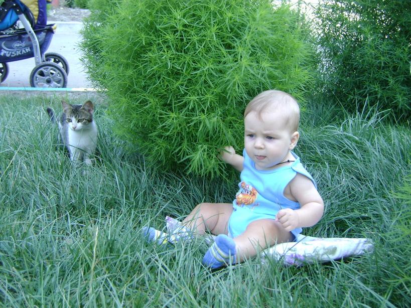 Мы с Марусей на прогулке. Ребенок и   котенок