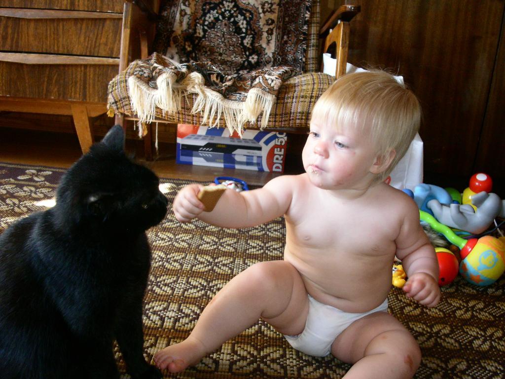 Маруська и Мурка. Ребенок и   котенок
