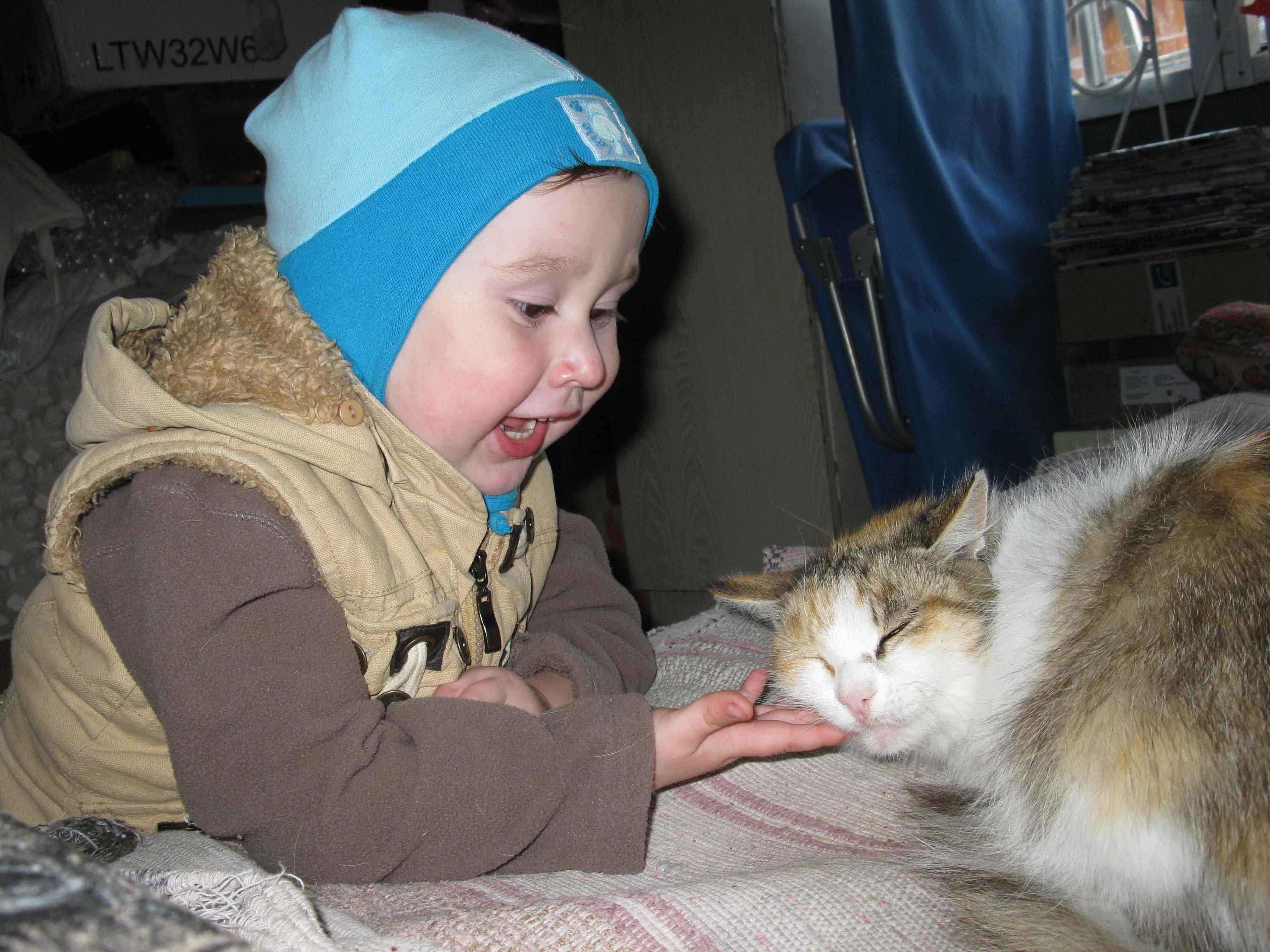 Кошечка, давай дружить! Буду щечки щекотить!. Ребенок и   котенок