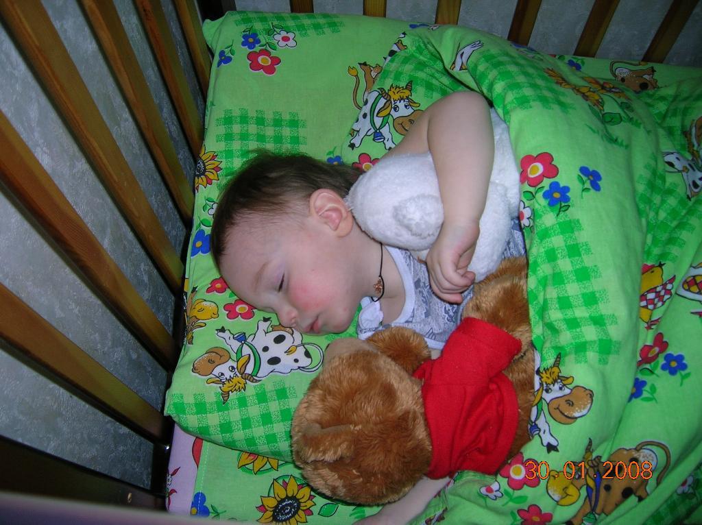 мой сон охраняют мои медведи.. Мои игрушки