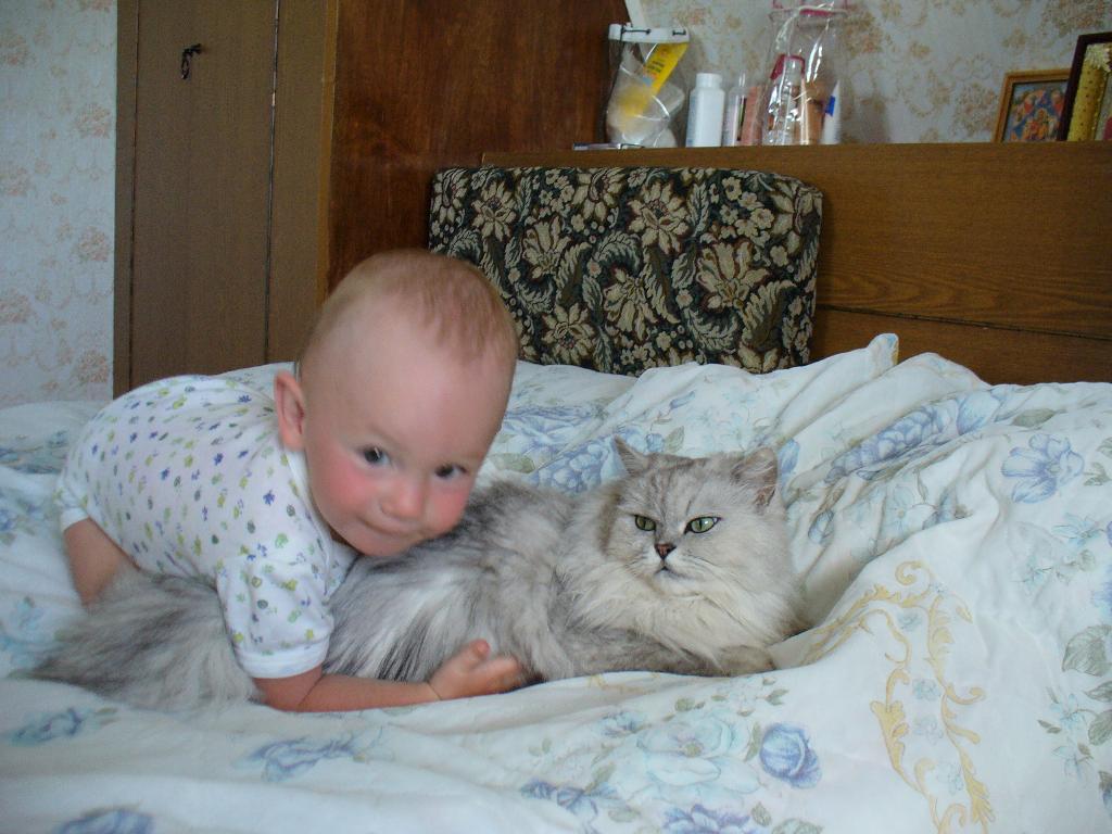 Киса, я тебя так люблю!. Ребенок и   котенок