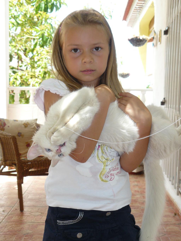 МОЙ ЛАСКОВЫЙ И НЕЖНЫЙ ДРУГ. Ребенок и   котенок