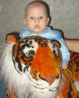 Два свирепых тигра. Мои игрушки