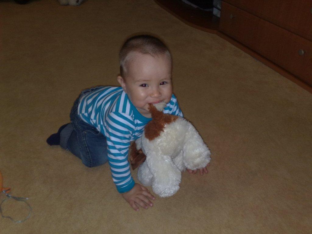 Я с любимой собачкой Дружок! . Мои игрушки