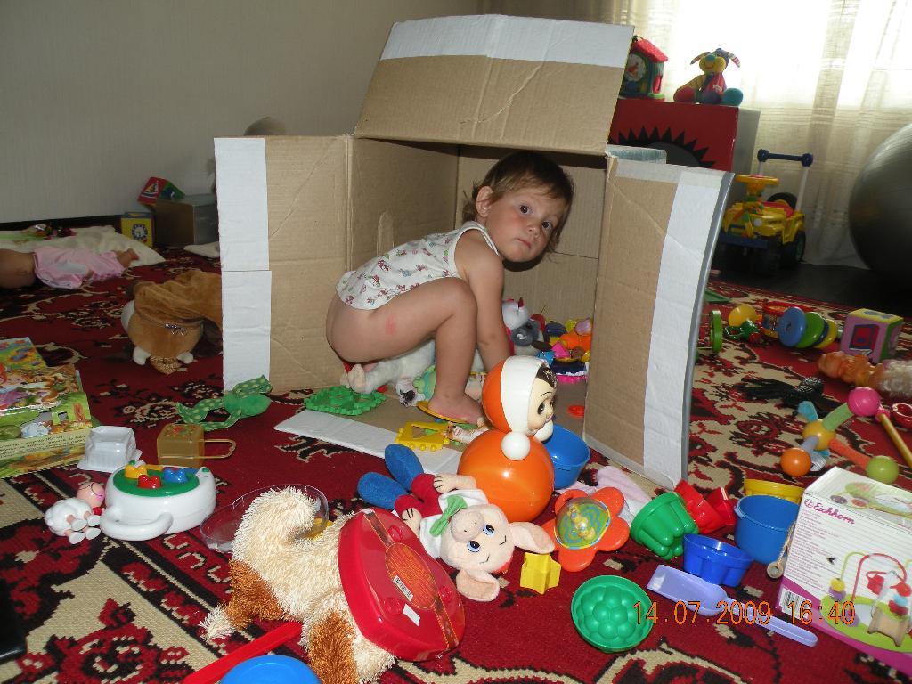 Инвентаризация. Мои игрушки
