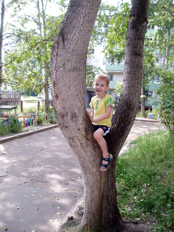 Я Сам на дерево взобрался!. Маленький герой