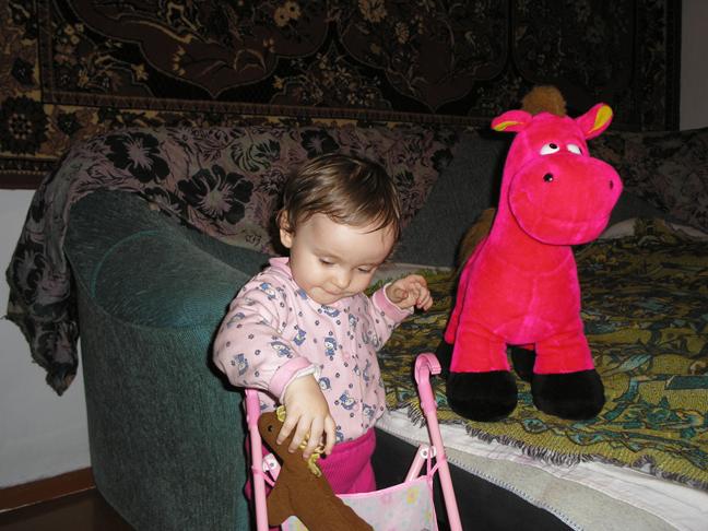Кони, кони поехали кататься!. Мои игрушки