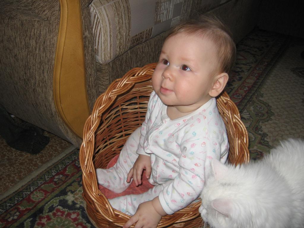 'Дида' значит 'Фрида'. Ребенок и   котенок