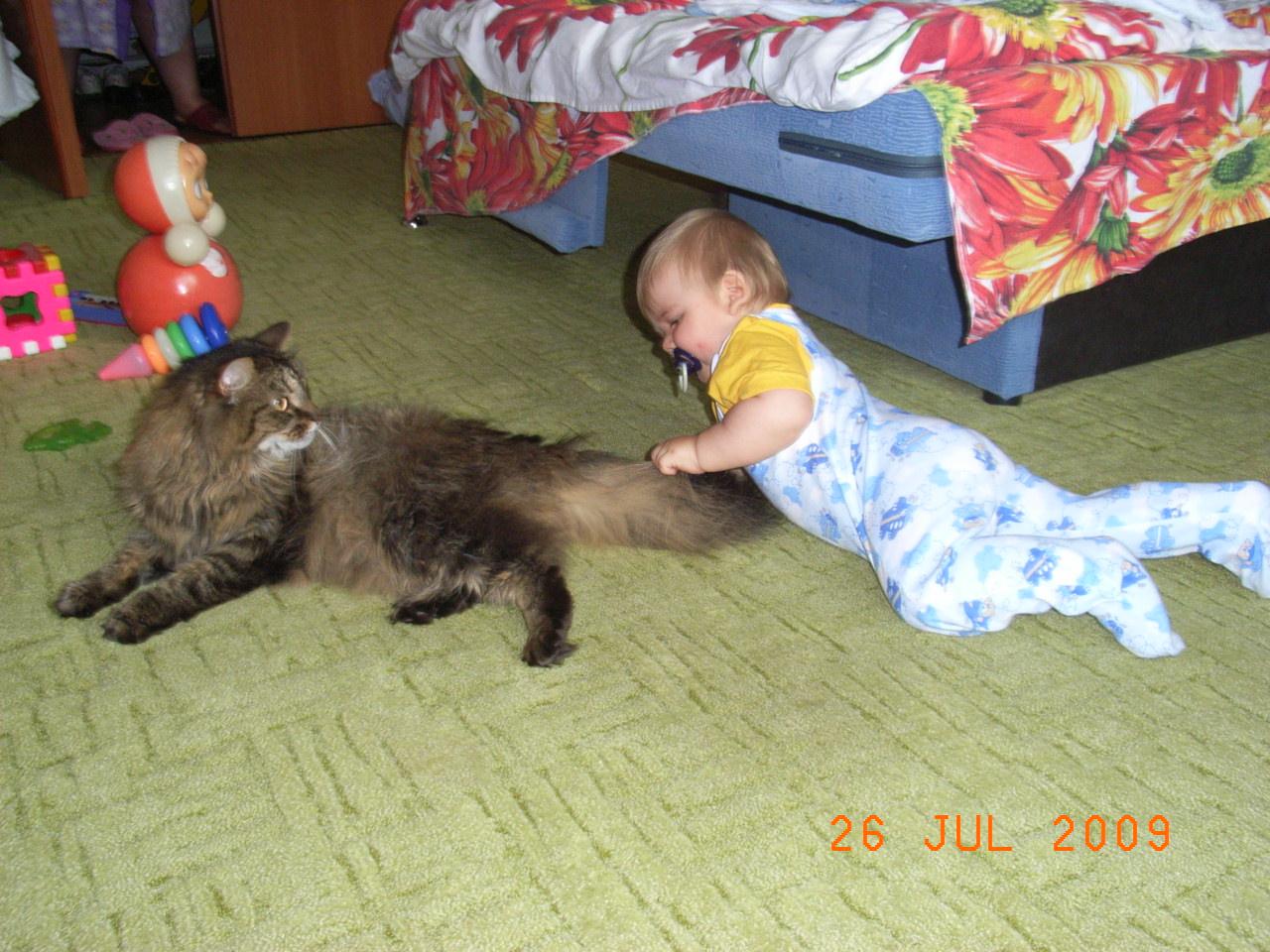 Данилка 8 мес.. Ребенок и   котенок