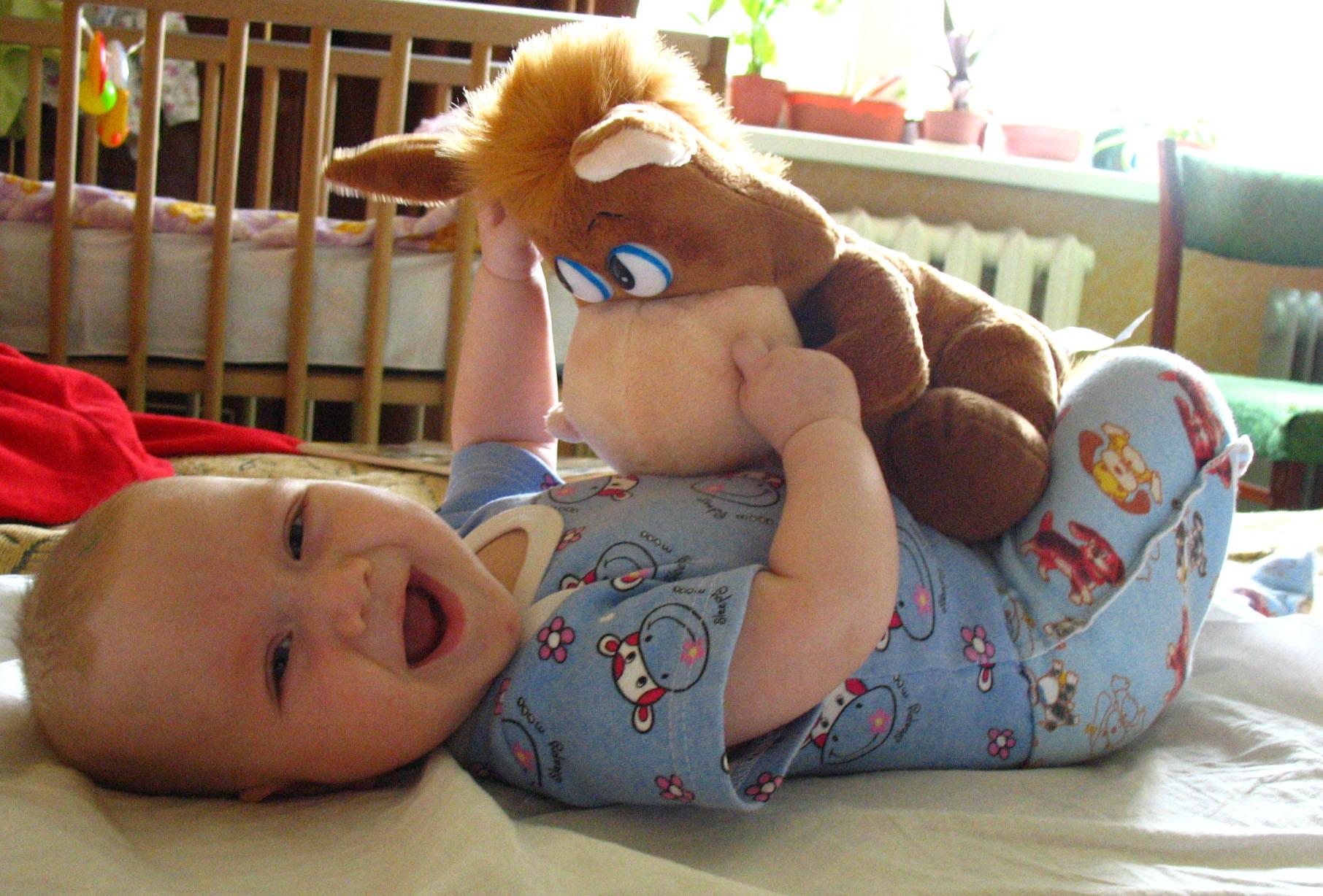 Мой любимый ослик!. Мои игрушки