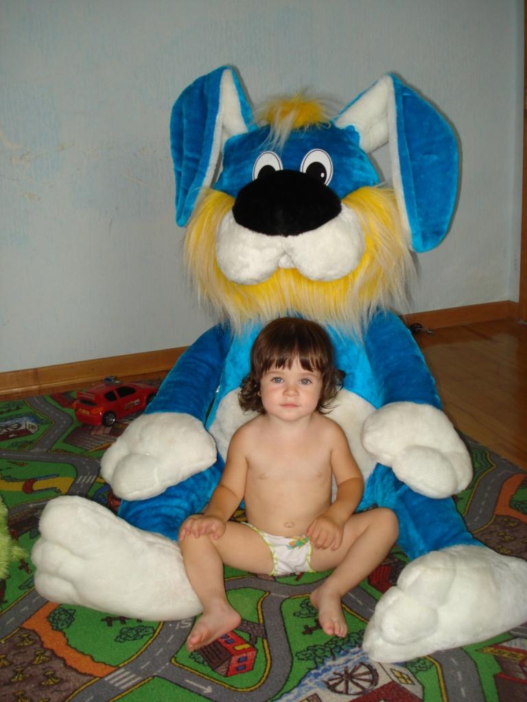Два зайчонка!. Мои игрушки