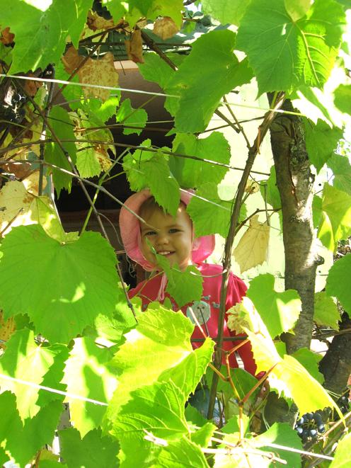 Листья свой меняют цвет... Улыбнусь я им в ответ!. Время улыбаться