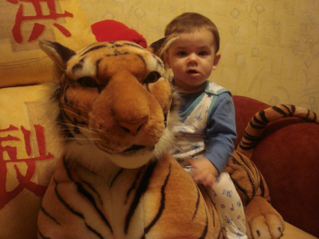 С тигрой. Мои игрушки