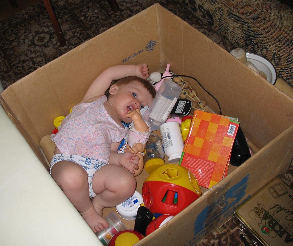 Найди НЕ ИГРУШКУ!. Мои игрушки