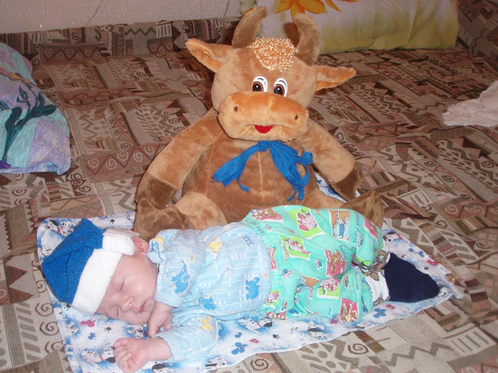 спать пора, не спит бычок. Мои игрушки