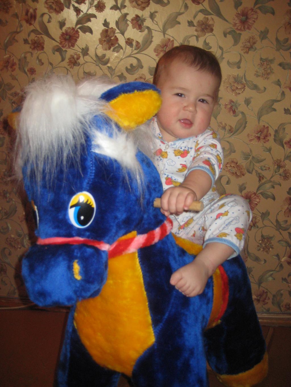 Моя любимая лошадка. Мои игрушки